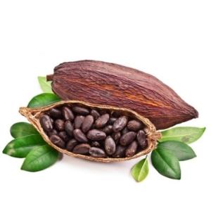 Какао бобы Форастеро