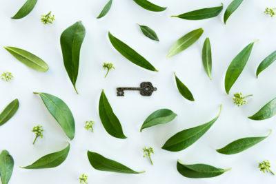Ключ к здоровью - очищение организма от шлаков и токсинов от KLETONIKA