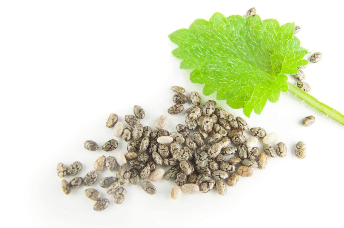 Fotografija-semena-Chia-na-belom-fone-kak-vygljadjat-zerna