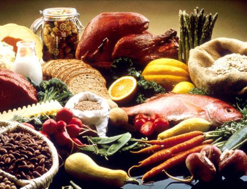 Здоровое питание каждый день — залог здоровой жизни